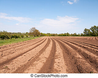 spring plowed field waiting for seed to be sown and crops grown