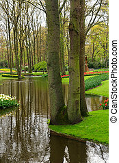 Spring pond in garden
