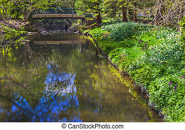 Spring River Bank
