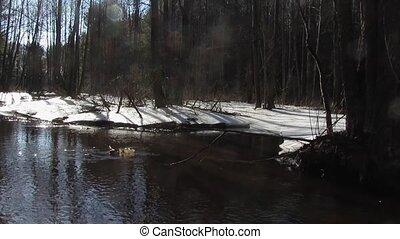 Spring River, panorama