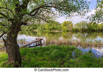 Spring River