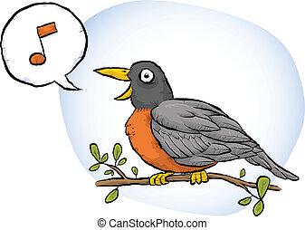 Spring Robin Song