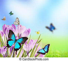 Spring romance - Spring flowers with butterflies