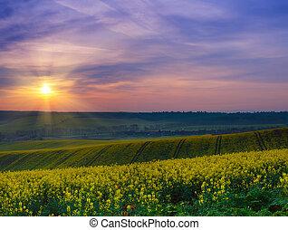 Spring rural sunrise