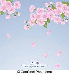 Spring sakura flowers with leaves on a blue background.