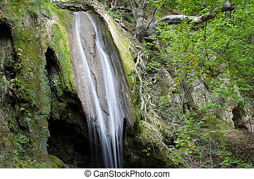 spring scène, bos, waterval