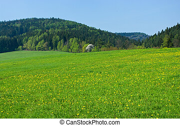 Spring scene with forest and hills