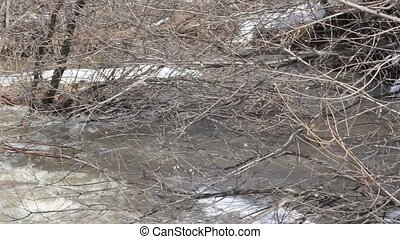 Spring snow melting on the river, i