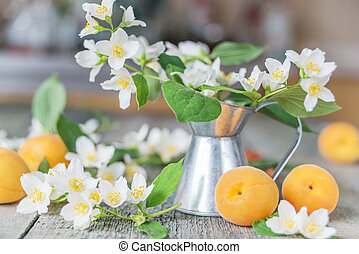 Spring still life with jasmine flowers in a metal jug and...
