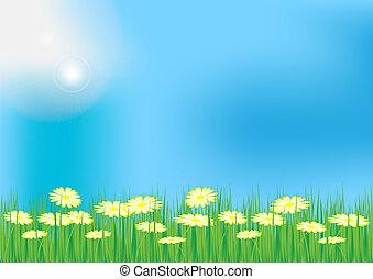 Spring / Summer Background