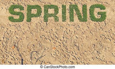 Spring text made from fresh grass among a barren land 4