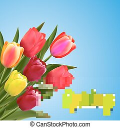 Spring text with tulip flower.