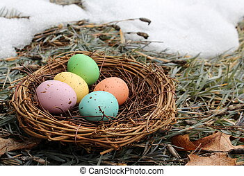 Spring thaw and nest of eggs - Spring thaw with twig nest ...
