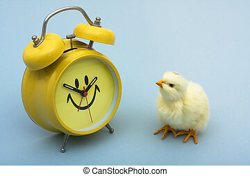 Spring Time - A yellow baby chicken with a clock sitting on ...