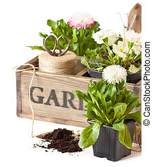Spring time. - Beautiful spring flowers and gardening tools ...