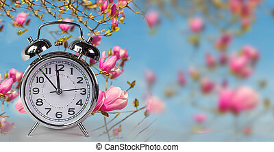 spring time clock flowers nature space for your text , ...