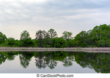 Spring trees by the river are reflected in the water