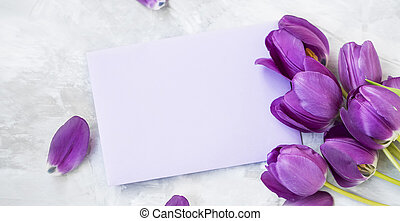 Spring tulips bouquet with card label , women's or mother's day holiday greeting with copy space label card, beautiful spring holidays card with purple tulips