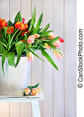 Spring tulips on an old bench