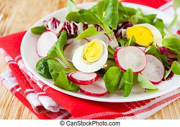 Spring vitamin salad with radish and egg