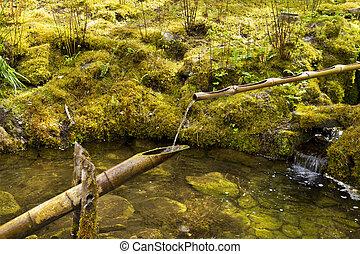 Spring Water in Japanese Garden