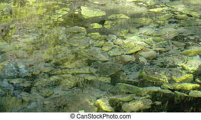 Spring water with mossy rocks underneath