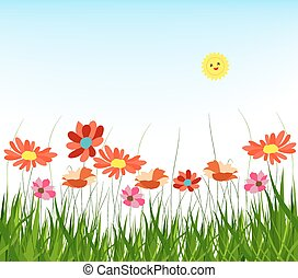 spring with grass and blue sky