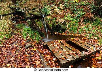 Spring with wooden bridge