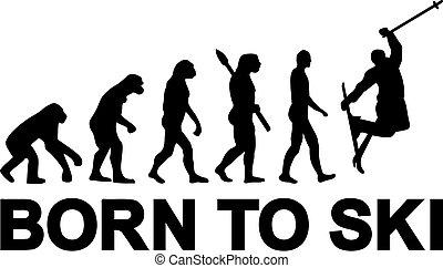 springen, evolutionsphasen, ski