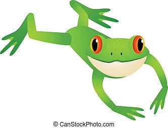 springende , frosch