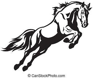 springende , pferd