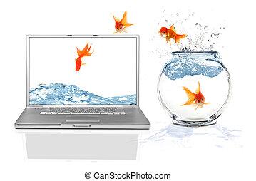 springende , wirklichkeit, internet, virtuell, online