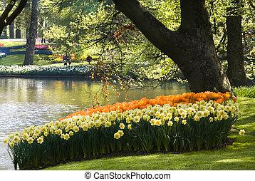 springflowers, пруд, парк, договоренность