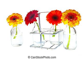 springflowers in vases