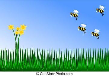 springtime, amarelo floresce, com, abelhas
