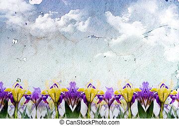 springtime, baggrund