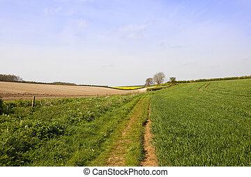 springtime bridleway