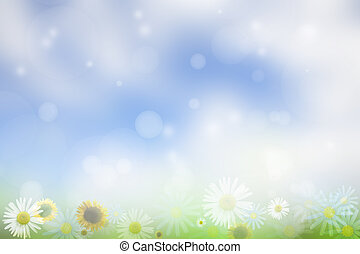 Springtime - Flowers on blue and white background