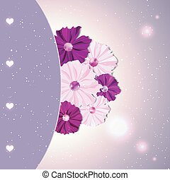 Springtime Colorful Cosmos Flower