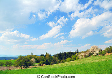 Springtime country landscape with cloudy sky