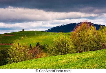 springtime in mountainous countryside. lovely rural...