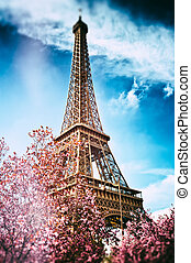 Springtime in Paris. Eiffel tower (toned image)