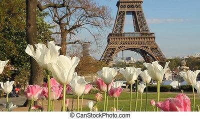 Springtime in Paris. Two shots.