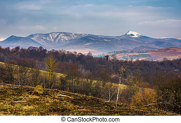 springtime landscape in Carpathian mountains. mountain ridge...