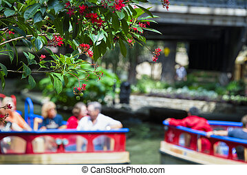 Blossoming trees overlook tourist boats in the river