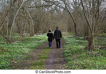 Springtime recreation walk
