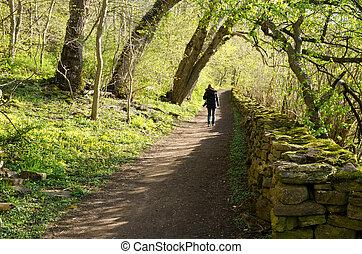 Springtime walk