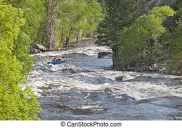 Springtime whitewater of Cache la Poudre River near Fort...