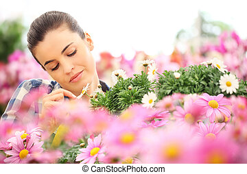 springtime, woman touches the petal of daisy in garden of daisies flowers
