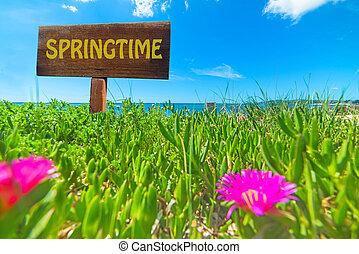 Springtime written on a wooden sign